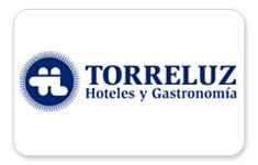 torreluz-link